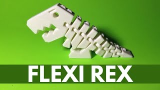 Flexi Rex 3D Printed (FUN TOY) - Tutorial, Print Settings, Time Lapse, Showcase