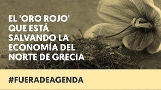 'ORO ROJO' EN GRECIA | Fuera de Agenda | LAB