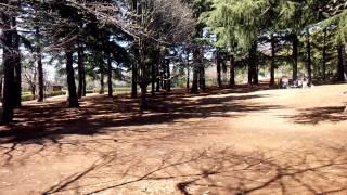 野川公園のイメージ