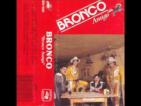Bronco/ Amigo Bronco