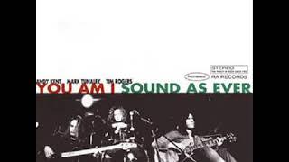 Sound As Ever  (You Am I)