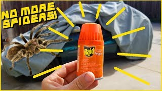 How to Get Rid of Bugs in Your Car!  [] Easy and Cheap []