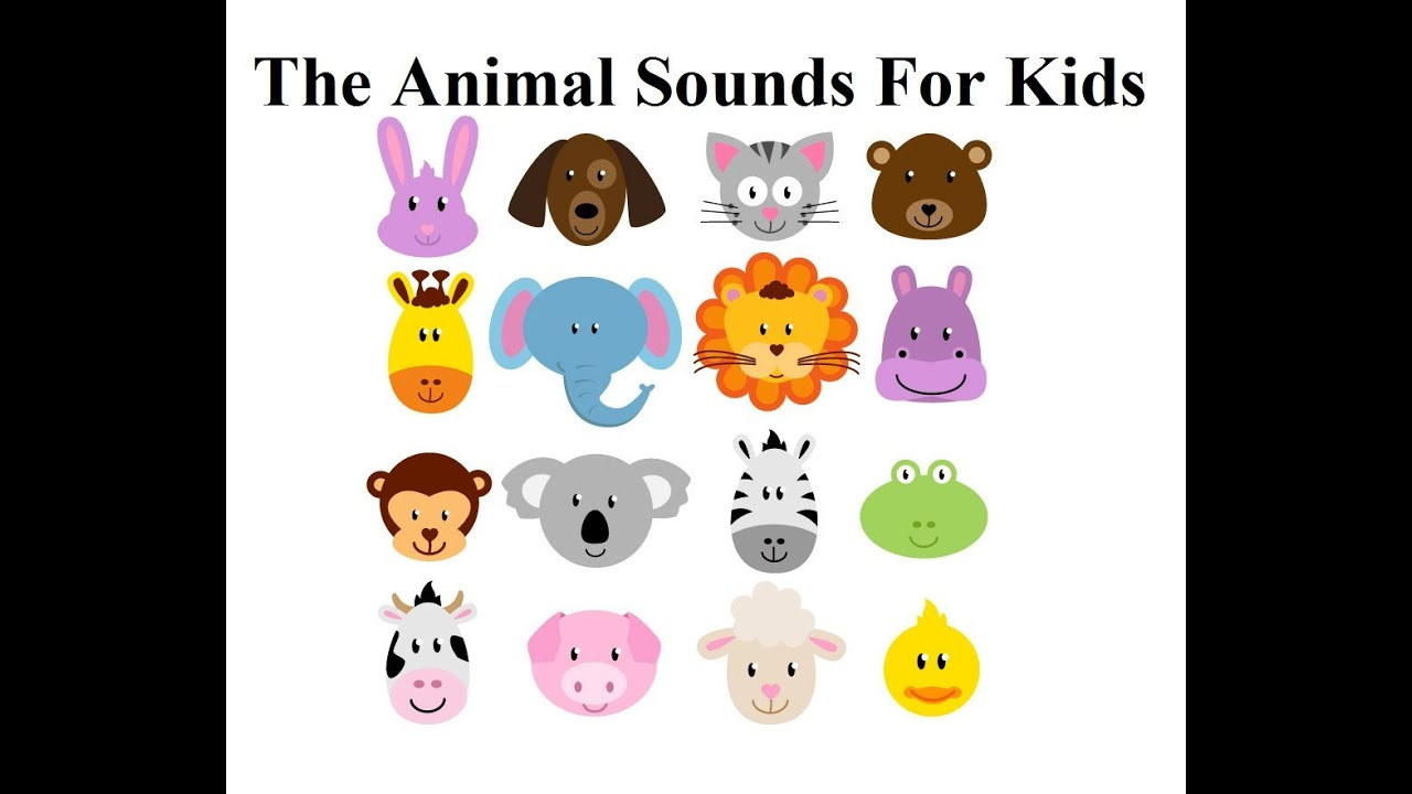 Animal Video Sounds for Kids