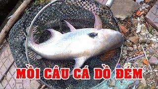 FISHING . MỒI CÂU CÁ DỒ ĐÉM