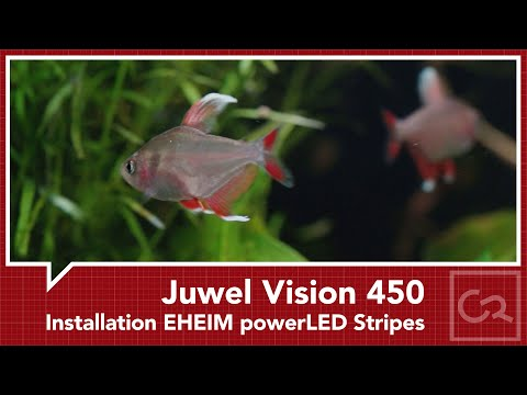 Installation EHEIM powerLED Stripes an Juwel Vision 450