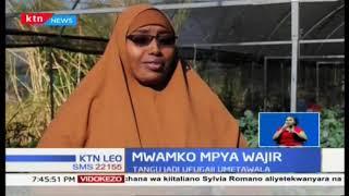 Wanawake wafaulu katika kilimo kaunti ya Wajir | Mwako mpya Wajir