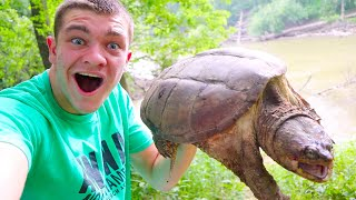 JUGGING GIANT SNAPPING TURTLES!