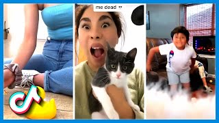 Cute Animal Moments and Funny Videos 2020   Stop Being So Cute TikTok Compilation
