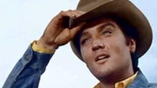 Snowbird - Elvis Presley