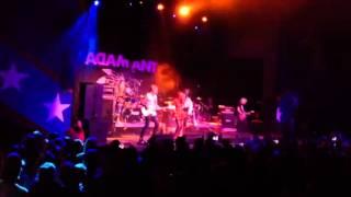 "Adam Ant performs ""Strip"" live"