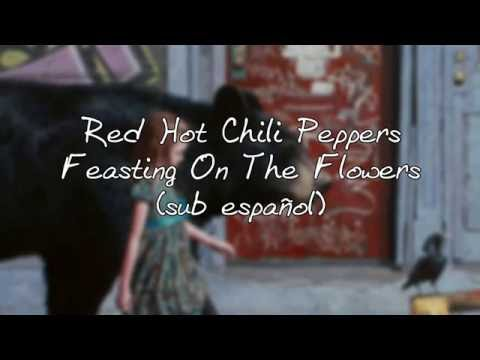 Red Hot Chili Peppers - Feasting on the Flowers Sub español