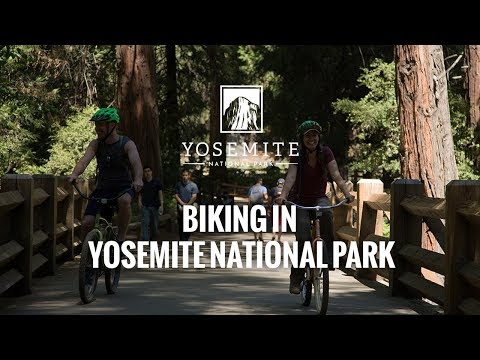 Biking in Yosemite National Park