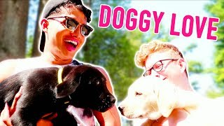SHOULD I GET ANOTHER DOG?!
