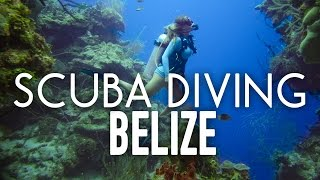 Scuba Diving The Blue Hole and Barrier Reef in Belize