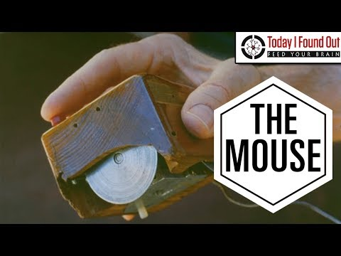 Who Invented the Computer Mouse and Its Surprisingly Long Journey to Your Desk