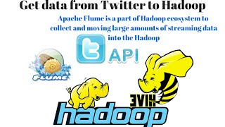 Apache Flume: How to Get Twitter data ? Dump twitter data to Hadoop