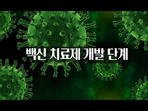 백신과 치료제 개발 단계 / 코로나19 백신 치료제 개발 원리
