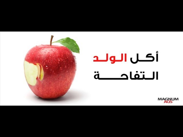 Lebanese Transparency Association TV Commercial