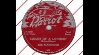 Flamingos - Dream Of A Lifetime (Parrot Rec. - Chicago mid 1950')
