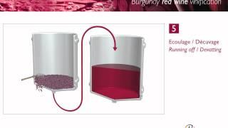 De bereiding van rode wijn.
