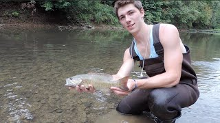 Part 2: How To Fish Creeks and Streams