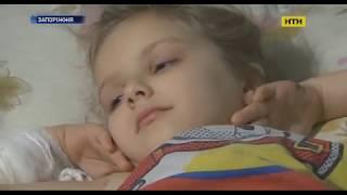 У Запоріжжі собаки мало не до смерті загризли 6-річну дівчинку