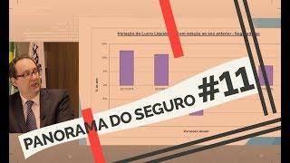 SEGURADORAS APRESENTAM AUMENTO DE LUCRO LÍQUIDO - PANORAMA DO SEGURO - Ep. 11