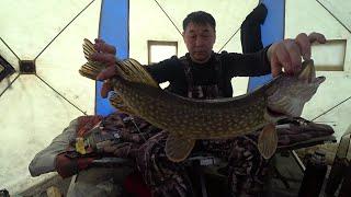 Что можно и нельзя о рыбалке