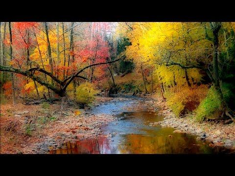 Einschlafmusik, Flöte und Natur, Entspannungsmusik