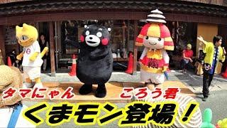くまモン、タマにゃん、ころう君登場!@高瀬裏川花しょうぶまつり20190601