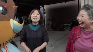 2019/12/18放送・知ったかぶりカイツブリにゅーす