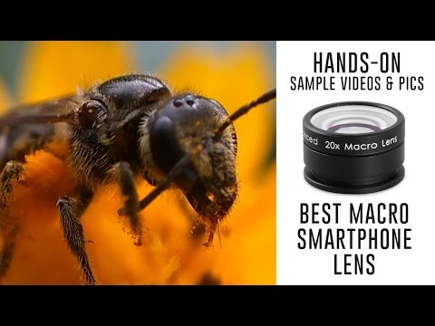 Best Macro Lens for Smartphones – Sample Videos Photos with Redmi Note 3 Camera