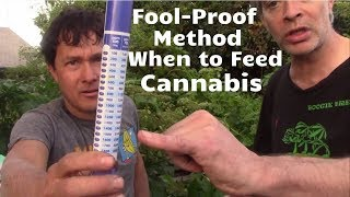 Fool-Proof Method to Know When to Feed Nutrients to Cannabis Plant for More Flowerss