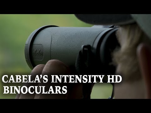 Cabela's Intensity HD Binocular Review