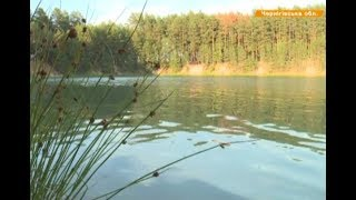 Голубые озера посреди леса: сколько стоит отдых и целебные свойства