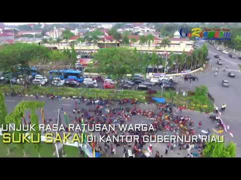 Video Udara Unjuk Rasa Ratusan Suku Sakai Hingga Aksi Dobrak Pagar Kantor Gubernur Riau