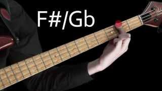 Learn Bass - Learning the notes of the fretboard