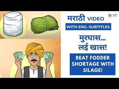 How to Make Silage