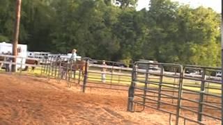 Big Bend Barrel Racing - NBHA - Seniors