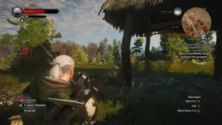 The Witcher 3 GOTY Edition - Velen XP Glitch - Patch 1 31