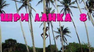 Шри-Ланка 8: Сдаем бутылки