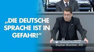 Die deutsche Sprache ist in Gefahr! - AfD-Fraktion im Bundestag