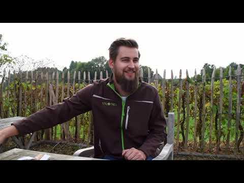 Krumpholz Werkzeuge bei STILTREU - Folge 03: Zwiebelpflanzer, Pflanzholz, Rechen
