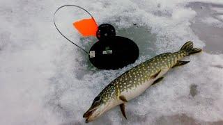 Рыбалка в карелии ип мешкова