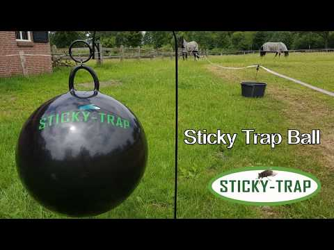 Sticky Trap flytrap ball 60 cm! New
