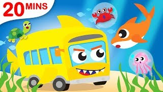 Baby Shark on the Shark Bus | Itsy Bitsy Did You See My Web? | Paw Patrol Chase  by Little Angel