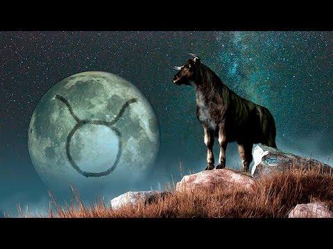 Как построить гороскоп совместимости