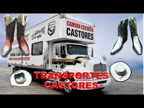CÓMO RECIBIR BOTAS FINAS Y SOMBREOS EN TRANSPORTES CASTORES