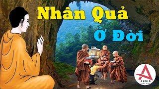 """Kể Truyện Đêm Khuya """"Cực Hay"""" Nhân Quả Ở Đời, Sống Sao Cho Đúng Lời Phật Dạy _ Audio Phật Giáo"""