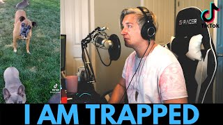 [tik tok tuesday] - i am trapped for your entertainment